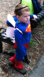 Superman with Fairy Wings