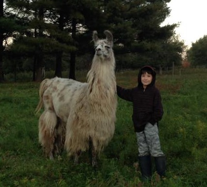 Number 3 posing with beautiful Libby, the llama.
