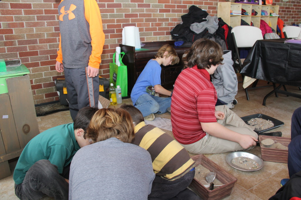sifting for fossils
